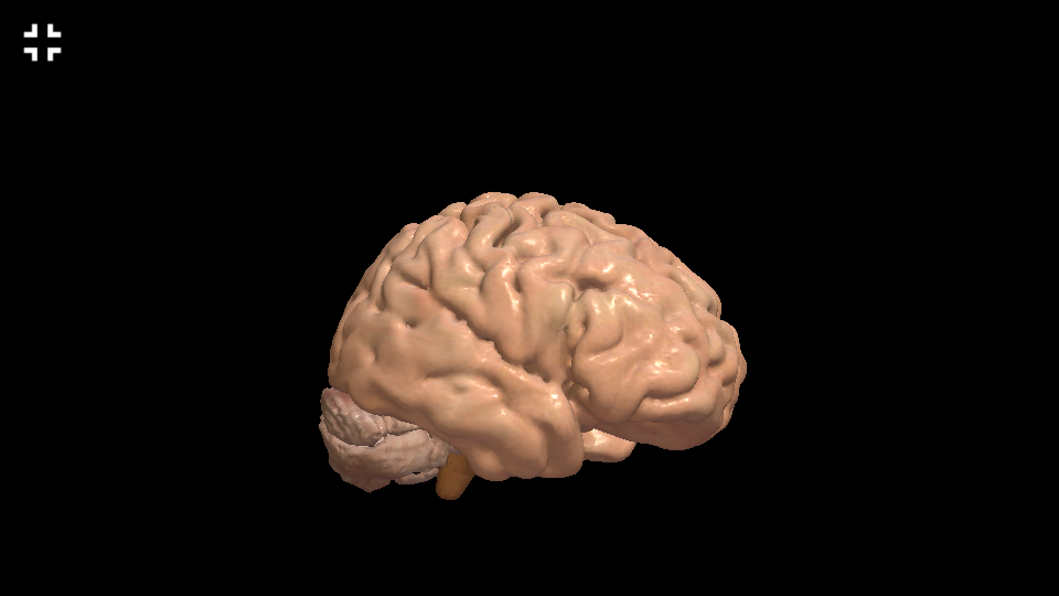 Interactive Neuro Anatomy 3D - New Version Released